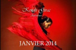 Janvier 2014~1